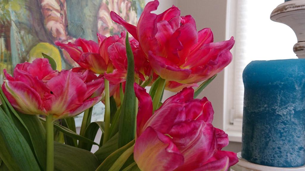 Feng Shui Blumen und Marie Kondos Ordnung